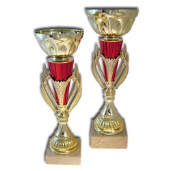 gold and red trophy cup