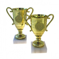 Universal low cost award cup