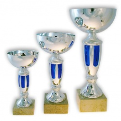 Coupe classique finition argent et bleu