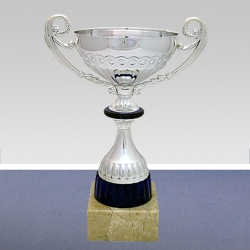 trophy cup with handles