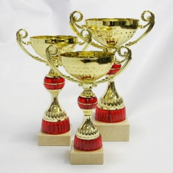 gold trophy cup with handles