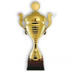 Золотой кубок чемпионов