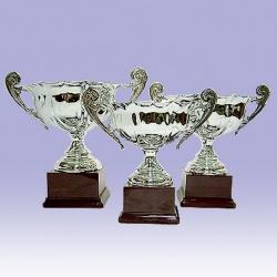 club trophy