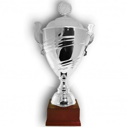 Luxury trophy cup