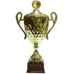 big trophy cup