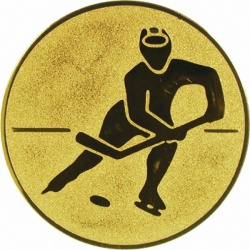 Вставки хоккей