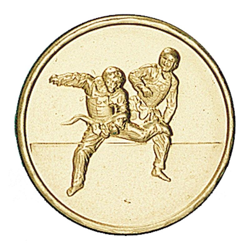 Вставки медалей и кубков единоборства