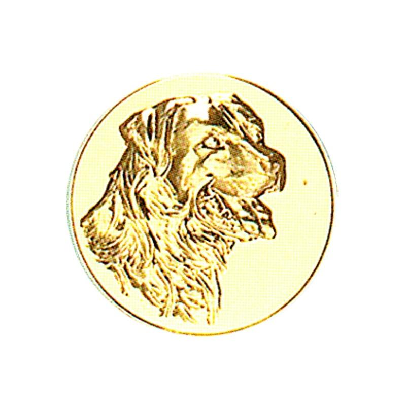 Pastille dorée chien