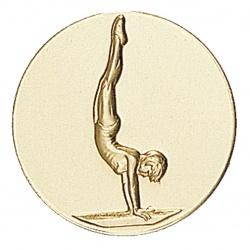 Вставки гимнастика - гимнаста