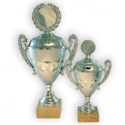 Beautiful stylized trophy cup