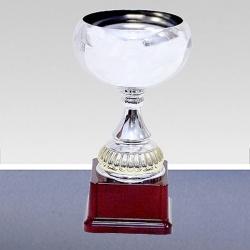 prestige silver cup