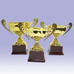 trophée prestige