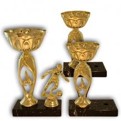 Dynamic and elegant trophy
